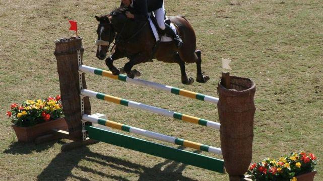 Hunter's Equestrian Bronze